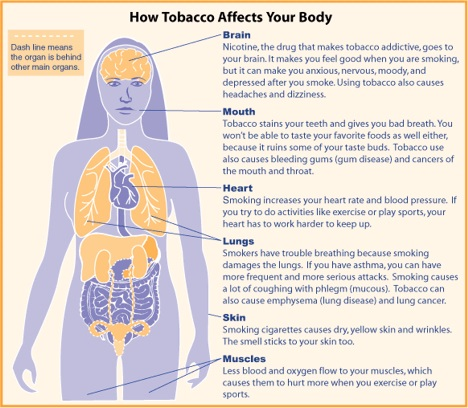 essay effects of smoking on the body Teens see their friends smoke and they think it makes them look cool or independent plus them feel no tension plus worries the first cause of smoking which is nicotine is an addictive and harmful substance contained in cigarettes it reduces tension and it is also believed that it can have a calming effect.